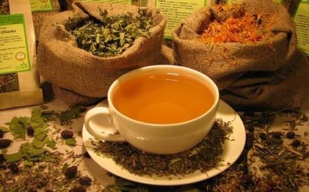чай в чашке и мешки с травами