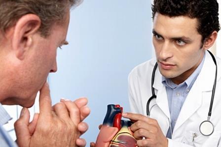 доктор показывает муляж сосудов сердца пациенту