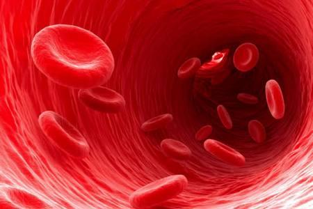 кровь бежит по вене