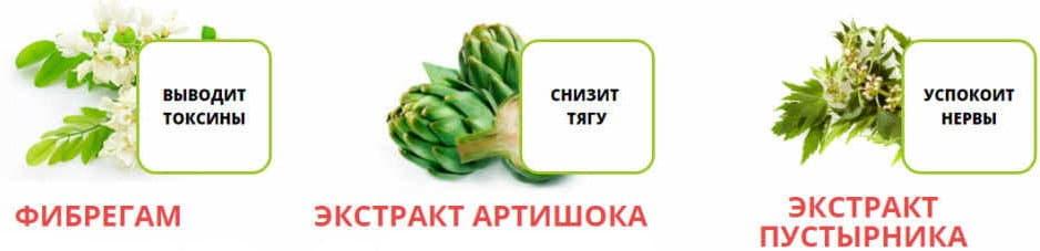 ветка фибергама и пустырника плод артишока