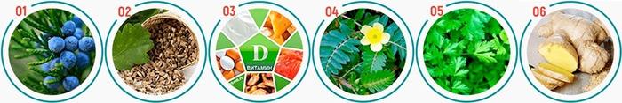 изображения трав и плодов из состава средства