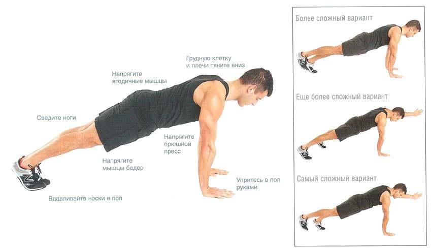 инфографика об упражнениях на грудные мышцы