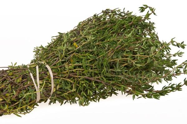 сбор травы Чабрец